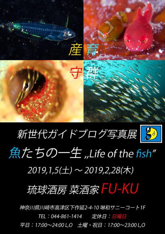 写真展ポスター 完成 黒ver.jpg